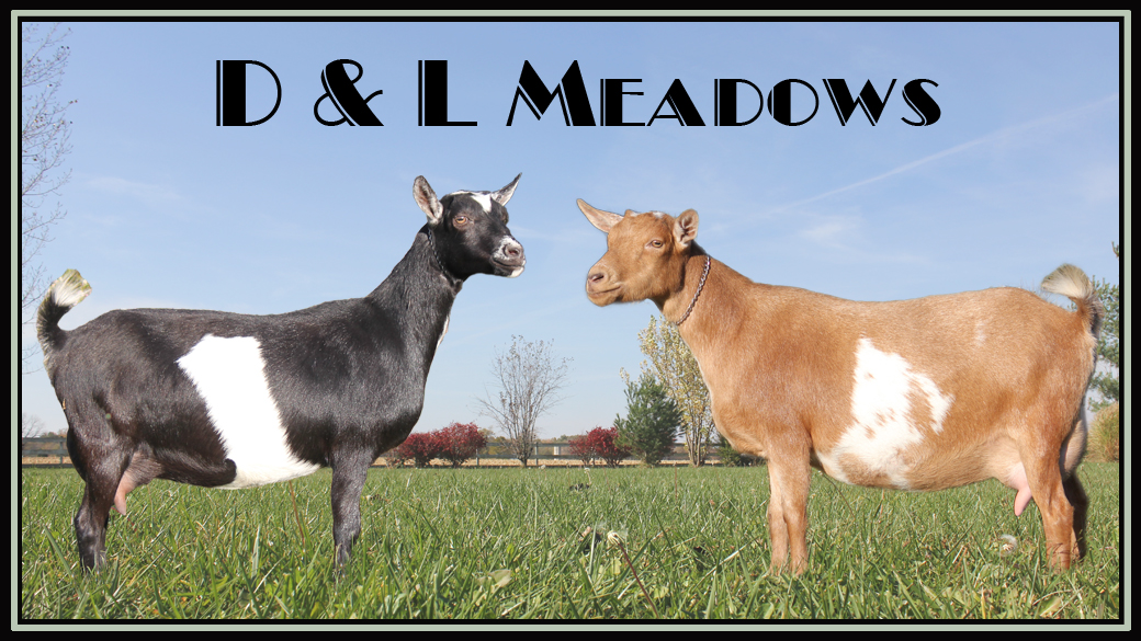 D and L Meadows